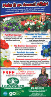 """Make itan Annual AffairThis holiday weekend, fill your gardens andmemorials with red, white and blue annuals..Cheaper by the Dozen -Save 10%Full Flat Special!Save when you buy a full flatof a single variety over theindividual pack price.on Geraniums, New Guinea Impatiensand Tuberous Begoniasover the individual 4.5"""" pot price when you buya dozen of a single variety.No Brainer ContainersWe have an endless selection ofgrab and go container gardens!* Patriotic AccentsCemetery urns, engraved memorials,patriotic flags and more!Summer never tasted so good! *We have the area's best selection of fruits, vegetablesand herbs, including USDA and MCIA certified organicand non-gmo varieties too!""""Jack's ClassicFREE Blossom Booster""""fertilizer with every hanging basket purchase!While supplies last!Makes 1 gallon.Valid May 22-25, 2020Landsburg-LANDSCAPE NURSERY218-829-5519go*16460 Hwy 371 N. BrainerdLandsburgNursery.comHours Mon-Fri 9-7;Sat 9-5:30; Sun 10-5OPEN MEMORIAL DAY 10-5ZabesPROUD Make itan Annual Affair This holiday weekend, fill your gardens and memorials with red, white and blue annuals.. Cheaper by the Dozen - Save 10% Full Flat Special! Save when you buy a full flat of a single variety over the individual pack price. on Geraniums, New Guinea Impatiens and Tuberous Begonias over the individual 4.5"""" pot price when you buy a dozen of a single variety. No Brainer Containers We have an endless selection of grab and go container gardens! * Patriotic Accents Cemetery urns, engraved memorials, patriotic flags and more! Summer never tasted so good! * We have the area's best selection of fruits, vegetables and herbs, including USDA and MCIA certified organic and non-gmo varieties too! """"Jack's Classic FREE Blossom Booster"""" fertilizer with every hanging basket purchase! While supplies last! Makes 1 gallon. Valid May 22-25, 2020 Landsburg- LANDSCAPE NURSERY 218-829-5519 go* 16460 Hwy 371 N. Brainerd LandsburgNursery.com Hours Mon-Fri 9-7; Sat 9-5:30; Sun 10-5 OPEN MEMORIAL DAY 10-5 Z"""