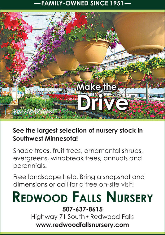 -FAMILY-OWNED SINCE 1951Make theDriveSee the largest selection of nursery stock inSouthwest Minnesota!Shade trees, fruit trees, ornamental shrubs,evergreens, windbreak trees, annuals andperennials.Free landscape help. Bring a snapshot anddimensions or call for a free on-site visit!REDWOOD FALLS NURSERY507-637-8615Highway 71 South  Redwood Fallswww.redwoodfallsnursery.com -FAMILY-OWNED SINCE 1951 Make the Drive See the largest selection of nursery stock in Southwest Minnesota! Shade trees, fruit trees, ornamental shrubs, evergreens, windbreak trees, annuals and perennials. Free landscape help. Bring a snapshot and dimensions or call for a free on-site visit! REDWOOD FALLS NURSERY 507-637-8615 Highway 71 South  Redwood Falls www.redwoodfallsnursery.com