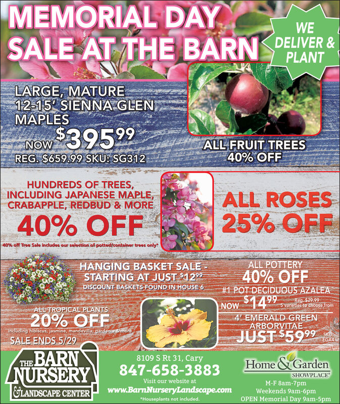MEMORIAL DAYSALE AT THE BARN DELIVER &WEPLANTLARGE, MATURE12-15 SIENNA GLENMAPLESNOW 39529REG. $659.99 SKU: SG312ALL FRUIT TREES40% OFFHUNDREDS OF TREES,INCLUDING JAPANESE MAPLE,CRABAPPLE, REDBUD & MOREALL ROSES25% OFF40% OFF40% off Tree Sale includes our selection of pottedlcontainer trees onlyALL POTTERYHANGING BASKET SALESTARTING AT JUST 1299DISCOUNT BASKETS FOUND IN HOUSE 640% OFF#1 POT DECIDUOUS AZALEA66Reg. $29.995 varieties to choose from4 EMERALD GREENARBORVITAEALL TROPICAL PLANTSNOW $149920% OFFincluding hibiscus, jasmine, mandevilla gardenismoreSALE ENDS 5/29JUST $592SKU.EGA4THE BARNZNURSERY8109 S Rt 31, CaryHome & GardenSHOWPLACE847-658-3883Visit our website atM-F 8am-7pmWeekends 9am-6pmOPEN Memorial Day 9am-5pmGLANDSCAPE CENTERwww.BarnNurseryLandscape.com*Houseplants not included. MEMORIAL DAY SALE AT THE BARN DELIVER & WE PLANT LARGE, MATURE 12-15 SIENNA GLEN MAPLES NOW 39529 REG. $659.99 SKU: SG312 ALL FRUIT TREES 40% OFF HUNDREDS OF TREES, INCLUDING JAPANESE MAPLE, CRABAPPLE, REDBUD & MORE ALL ROSES 25% OFF 40% OFF 40% off Tree Sale includes our selection of pottedlcontainer trees only ALL POTTERY HANGING BASKET SALE STARTING AT JUST 1299 DISCOUNT BASKETS FOUND IN HOUSE 6 40% OFF #1 POT DECIDUOUS AZALEA 66 Reg. $29.99 5 varieties to choose from 4 EMERALD GREEN ARBORVITAE ALL TROPICAL PLANTS NOW $1499 20% OFF including hibiscus, jasmine, mandevilla gardenismore SALE ENDS 5/29 JUST $592 SKU. EGA4 THE BARN ZNURSERY 8109 S Rt 31, Cary Home & Garden SHOWPLACE 847-658-3883 Visit our website at M-F 8am-7pm Weekends 9am-6pm OPEN Memorial Day 9am-5pm GLANDSCAPE CENTER www.BarnNurseryLandscape.com *Houseplants not included.