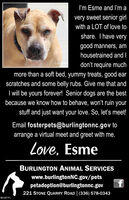 I'm Esme and I'm avery sweet senior girlwith a LOT of love toshare. I have verygood manners, amhousetrained and Iloiodon't require muchmore than a soft bed, yummy treats, good earscratches and some belly rubs. Give me that andI will be yours forever! Senior dogs are the bestbecause we know how to behave, won't ruin yourstuff and just want your love. So, let's meet!Email fosterpets@burlingtonnc.gov toarrange a virtual meet and greet with me.Love, EsmeBURLINGTON ANIMAL SERVICESwww.burlingtonNC.gov/petsfpetadoption@burlingtonnc.gov221 STONE QUARRY ROAD (336) 578-0343BN-40191 I'm Esme and I'm a very sweet senior girl with a LOT of love to share. I have very good manners, am housetrained and I loio don't require much more than a soft bed, yummy treats, good ear scratches and some belly rubs. Give me that and I will be yours forever! Senior dogs are the best because we know how to behave, won't ruin your stuff and just want your love. So, let's meet! Email fosterpets@burlingtonnc.gov to arrange a virtual meet and greet with me. Love, Esme BURLINGTON ANIMAL SERVICES www.burlingtonNC.gov/pets f petadoption@burlingtonnc.gov 221 STONE QUARRY ROAD (336) 578-0343 BN-40191
