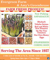 Evergreen Farm& Amy's GreenhouseFARM FRESH PRODUCE!Now PickingASPARAGUS!RhubarbVidalia OnionsRed and WhiteNew PotatoesOn The VineTomatoesOur Own HoneyEggsSTRAWBERRIESCOMING SOONServing The Area Since 19572 miles west of Yorkville on Fox St., Yorkville  630-553-5455Spring Hours: 9am-5pm  7 Days A WeekSM-CL1777580 Evergreen Farm & Amy's Greenhouse FARM FRESH PRODUCE! Now Picking ASPARAGUS! Rhubarb Vidalia Onions Red and White New Potatoes On The Vine Tomatoes Our Own Honey Eggs STRAWBERRIES COMING SOON Serving The Area Since 1957 2 miles west of Yorkville on Fox St., Yorkville  630-553-5455 Spring Hours: 9am-5pm  7 Days A Week SM-CL1777580