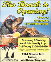 The Beach isOpeniag!Check ouiWooibeech'sNEW Aurora location!Grooming & TrainingAvailable Now By Appt.Call Today 630-686-8050!Doggie Daycare To Be Available Soon!2124 Galena Blvd.Aurora, ILWÖÖFBEACH woofbeachbay.comSM-CL1781227 The Beach is Openiag! Check oui Wooibeech's NEW Aurora location! Grooming & Training Available Now By Appt. Call Today 630-686-8050! Doggie Daycare To Be Available Soon! 2124 Galena Blvd. Aurora, IL WÖÖFBEACH woofbeachbay.com SM-CL1781227