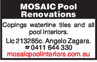 MOSAIC PoolRenovationsCopings waterline tiles and allpool interiors.Lic 213285c. Angelo Zagara0411 644 330mosaicpoolintenors.com.au