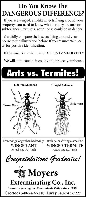 Thursday June 7 2018 Ad Moyers Termite Pest Control Daily News Record