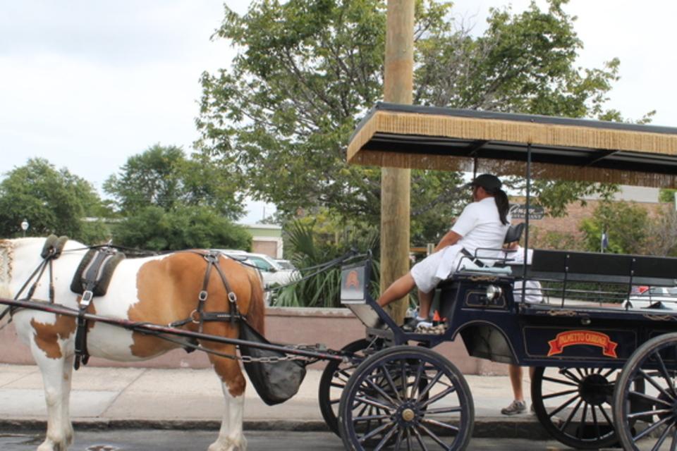 Pathfinders Travel Inc - Travel - Travel Agencies in Philadelphia PA