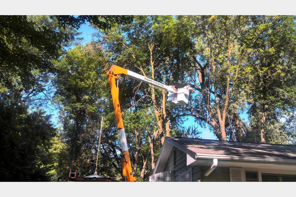 Frank's Tree Service - Services - Landscaping in Cedar Rapids IA