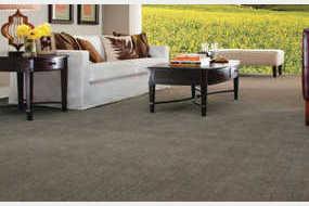 Advantage Carpet in Bridgeview, IL