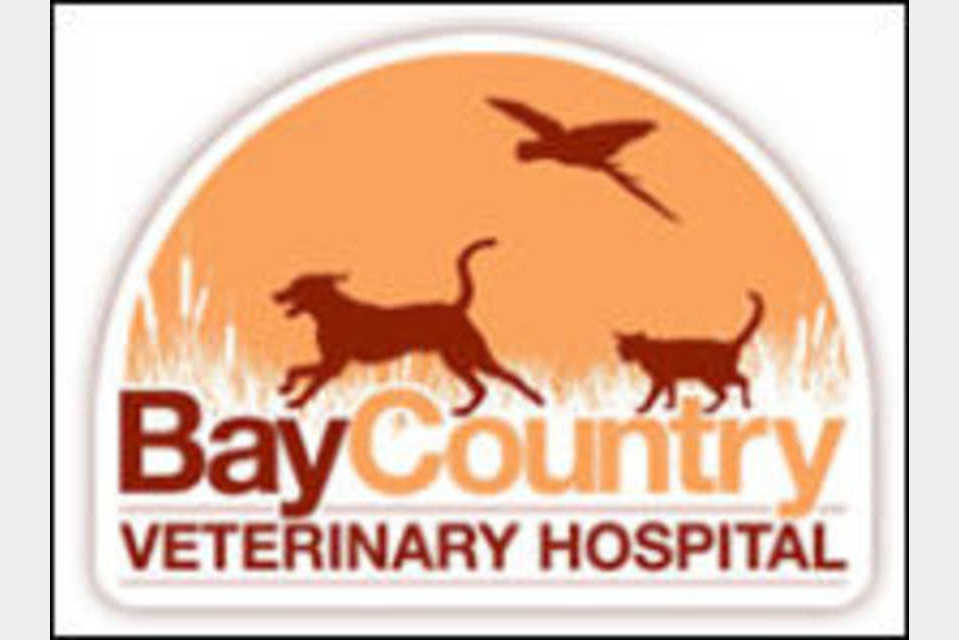 Bay Country Veterinary Hospital - Pets and Animals - Pet Care in Crownsville MD