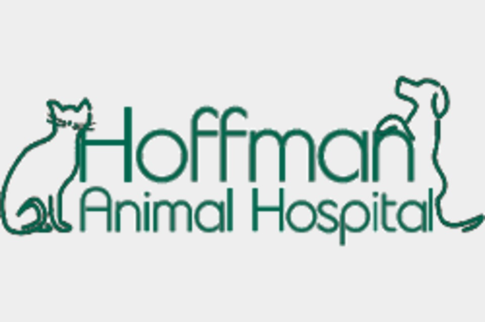 Hoffman Animal Hospital - Pets and Animals - Veterinary Clinics in Annapolis MD