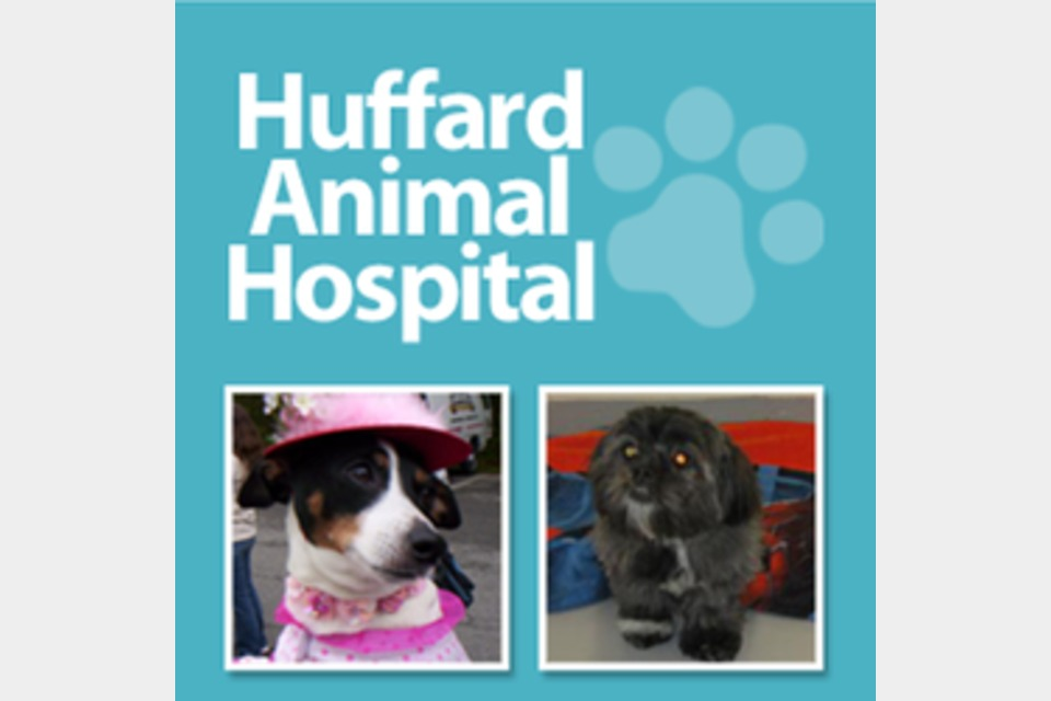 Huffard Animal Hospital - Pets and Animals - Pet Care in Pasadena MD