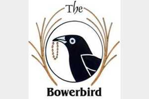 The Bowerbird in Old Lyme, CT