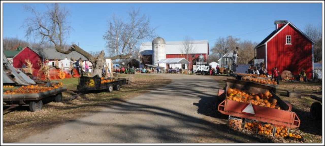 Nelson Farm - Agriculture - Farming in Litchfield MN