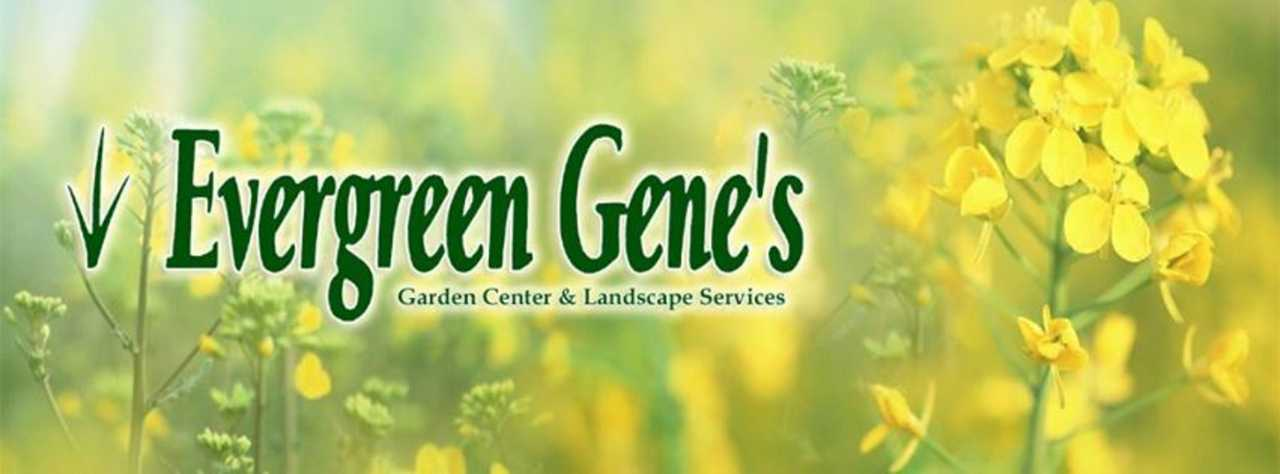 Evergreen Gene's - Services - Landscaping in Glen Burnie  MD