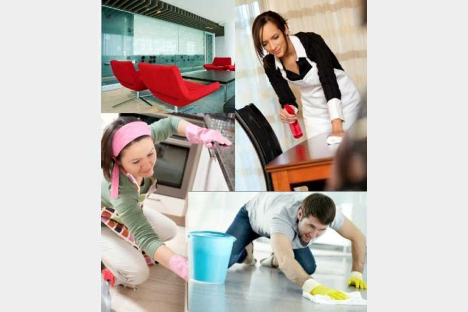 Mr Meticulous Cleaning Pty Ltd - Services - Cleaning Services in NEUTRAL BAY NSW