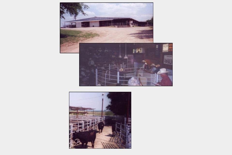 West Auction, Inc. - Services - Auction Services in West  TX