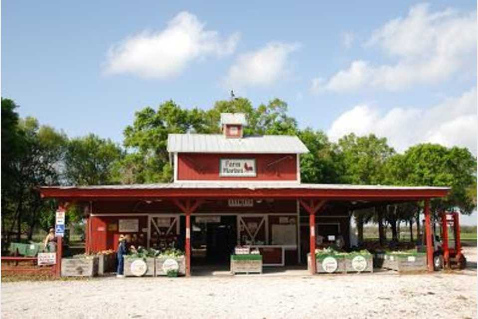Hunsader Farms - Agriculture - Agriculture Production in Bradenton FL