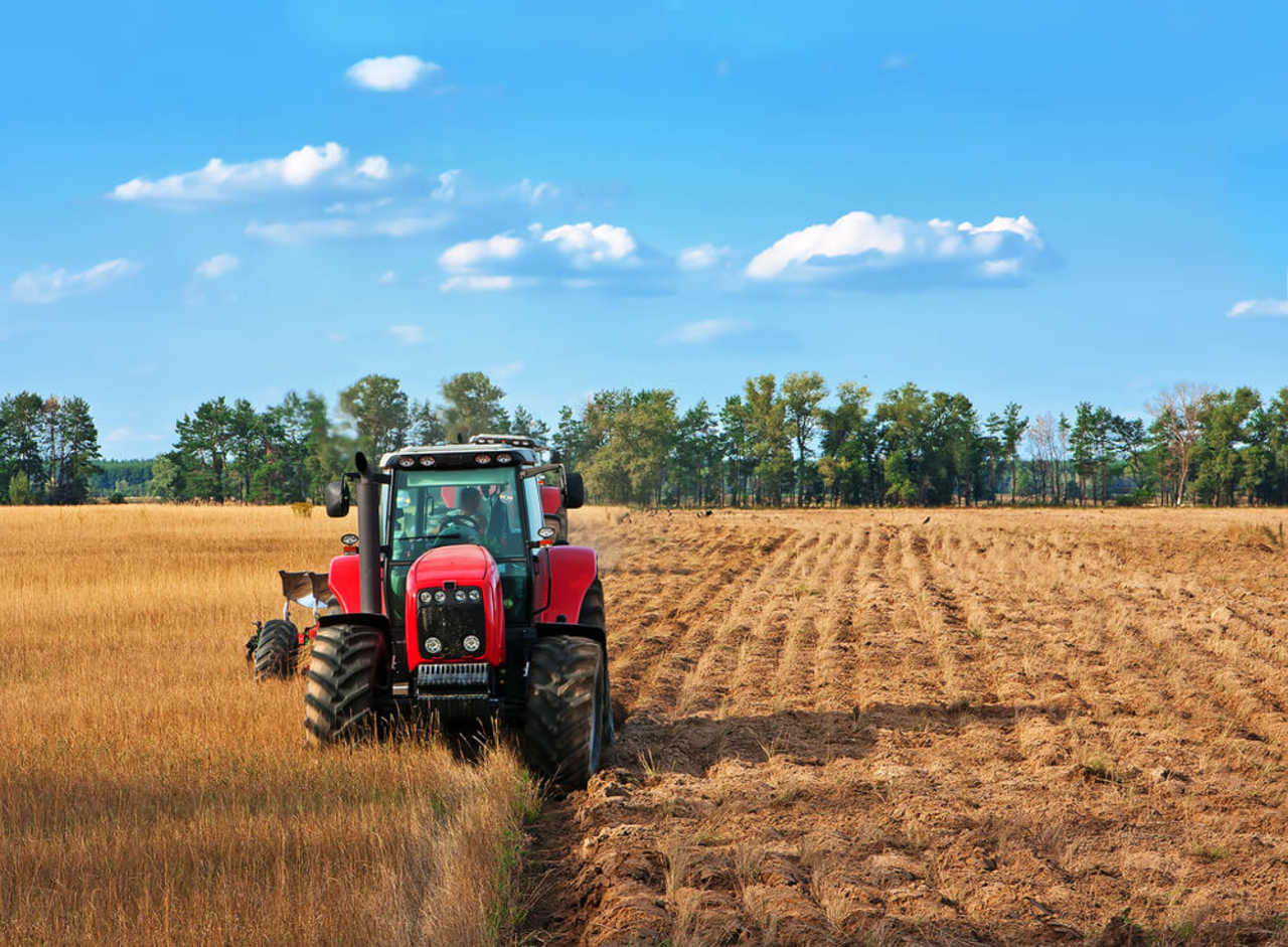 MS Diversified - Manufacturing - Farm Equipment and Supplies in Fairfax MN