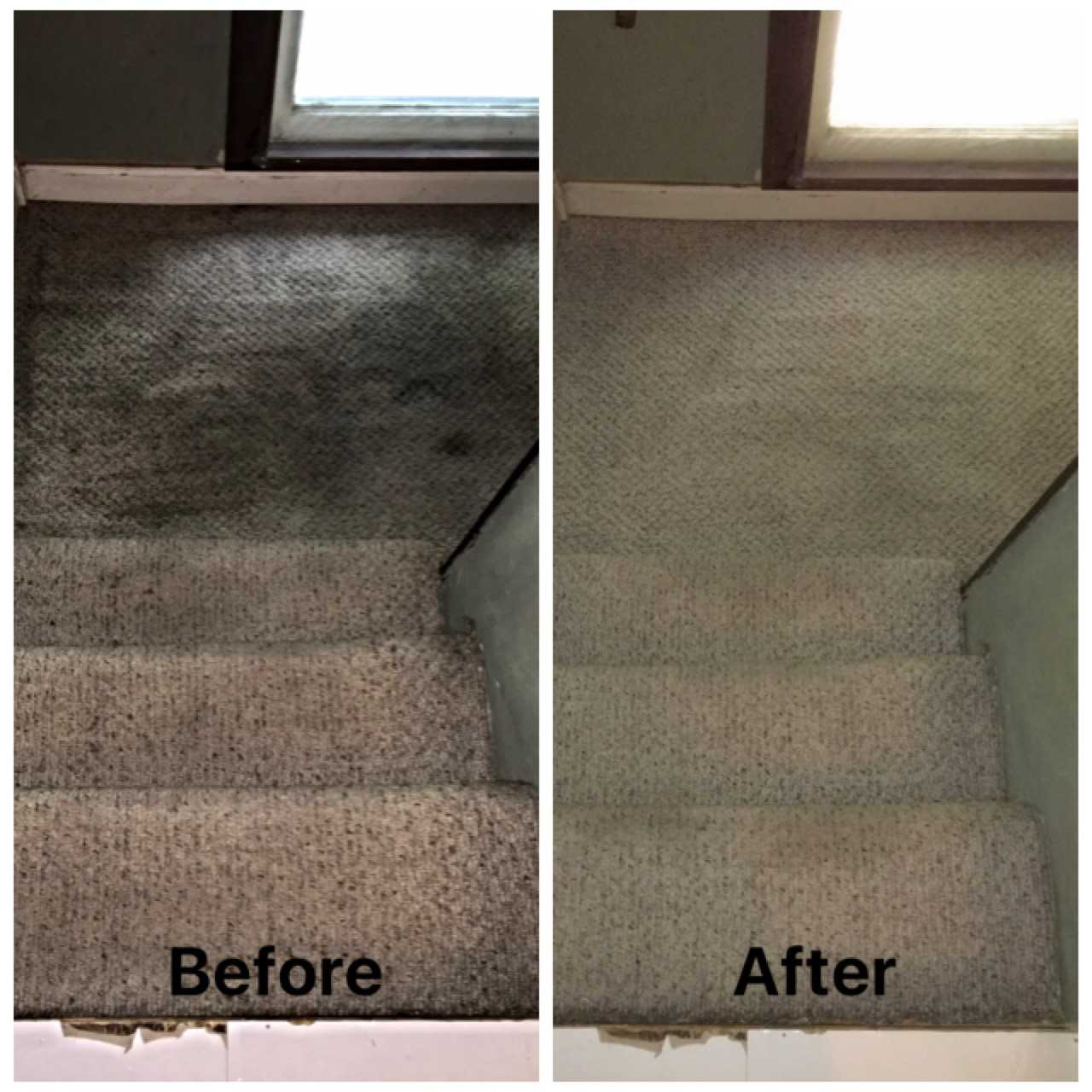 Whites Carpet Cleaners - Services - Carpet and Upholstery Cleaning in cedar rapids IA