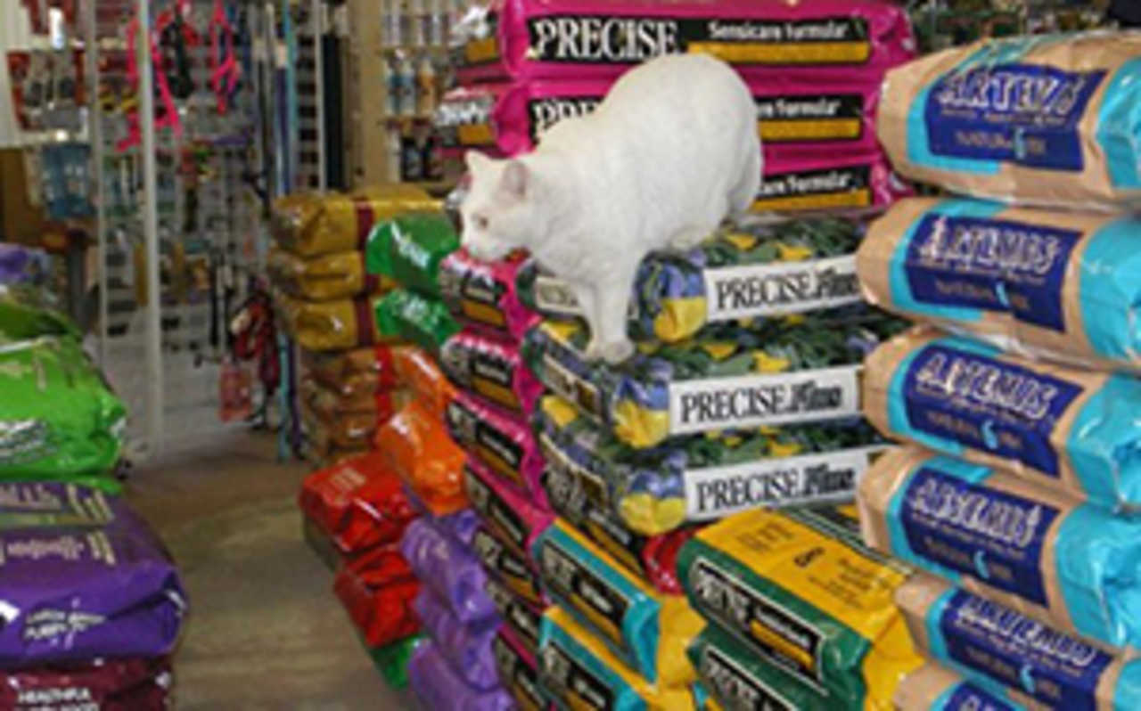 Crunchies Natural Pet Foods - Pets and Animals - Pet Store in Crofton MD