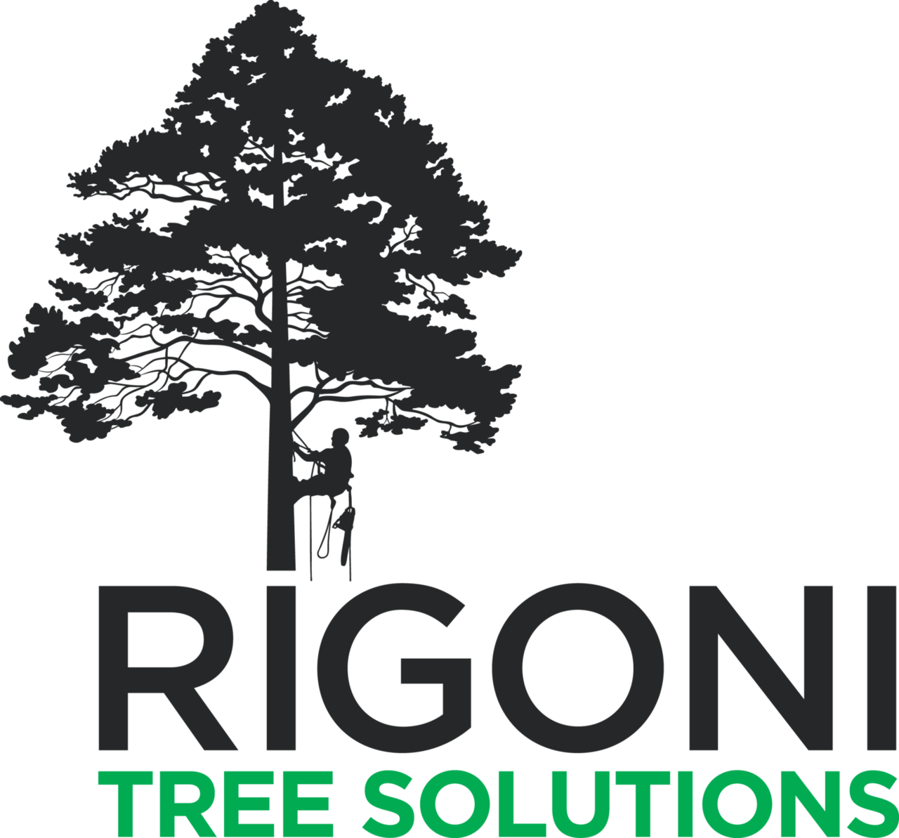 Rigoni Tree Solutions - Services - Landscaping in Hampton VIC