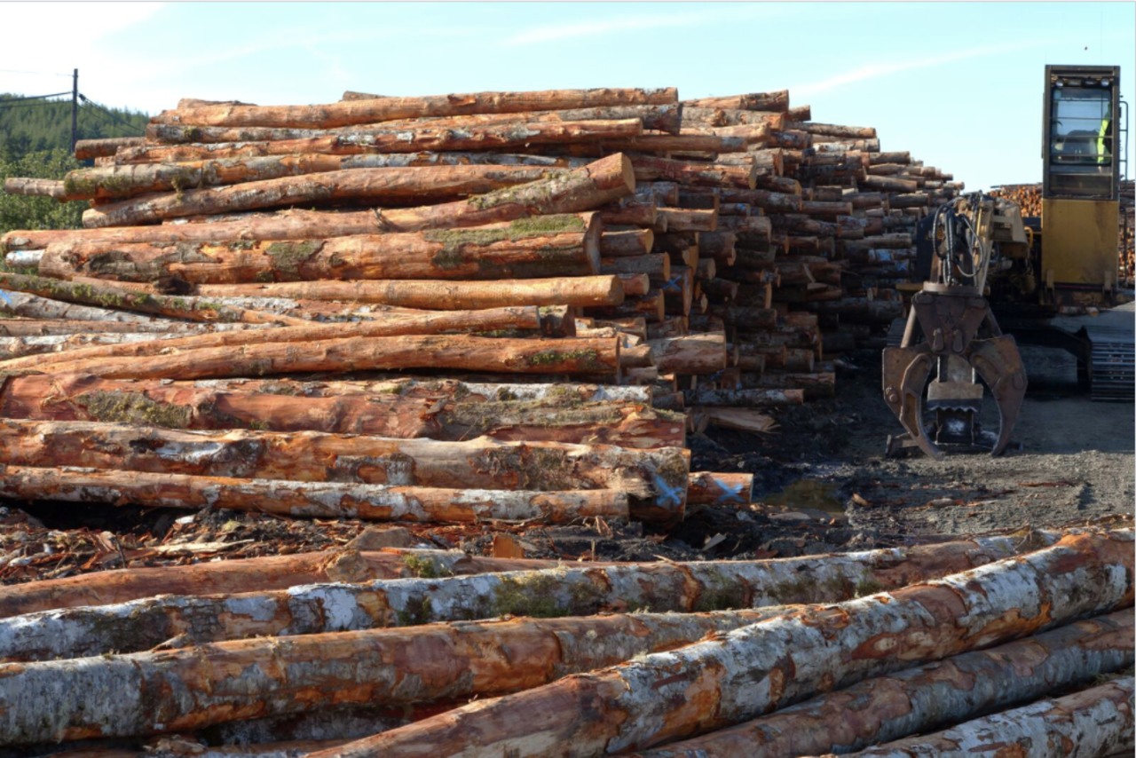Lutke Forest Products - Construction - Lumber in Manton MI