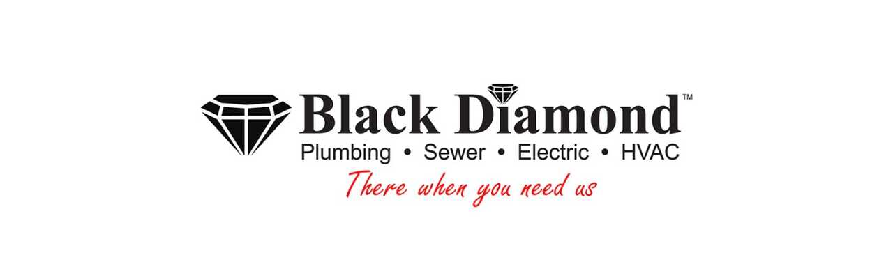 Black Diamond Plumbing & Mechanical Inc - Services - Electricians in McHenry IL