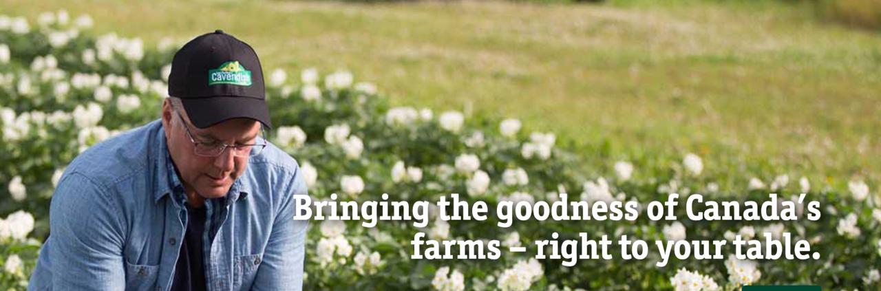 Cavendish Farms - Agriculture - Farming in Dieppe NB